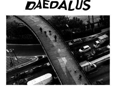 Daedalus /// adidas skateboarding